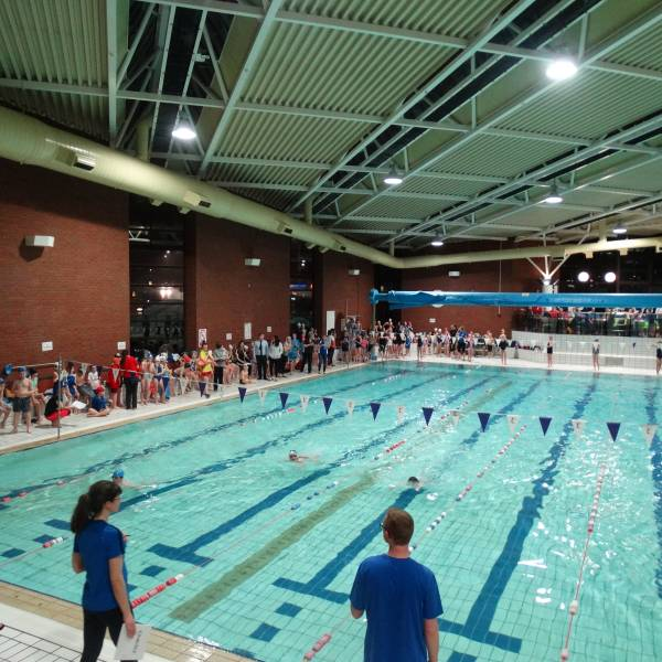 Primary School Swimming Galas