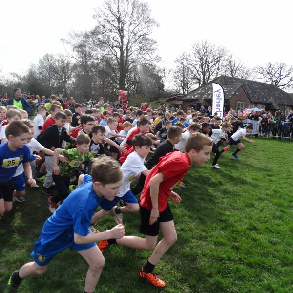 Primary Schools Annual Cross Country Event